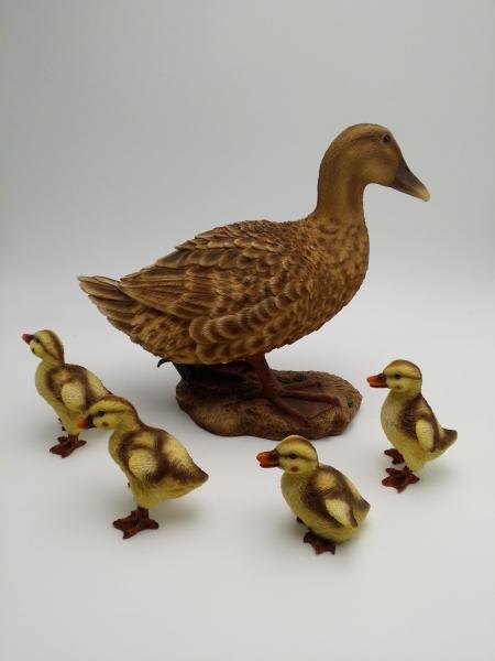 Ente Mutter mit 4 Kindern